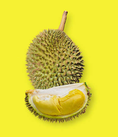 fresh healthy durian fruit food in thailand yellow background