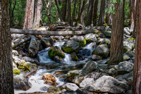 Yosmite National Park, Californië Stockfoto