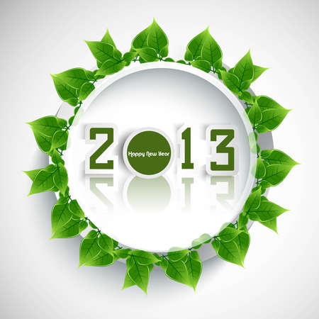 whit: New year 2013 reflection green lives circle colorful whit background