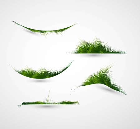 grass vector: abstract shiny green grass collection vector frame illustration