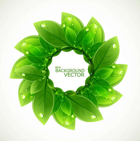 abstract circle nature leaf ecology vector design Vector