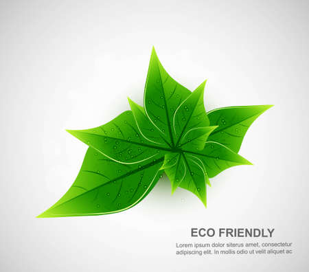 abstract natural eco green lives white background Vector