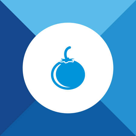 Tomato icon on blue color background