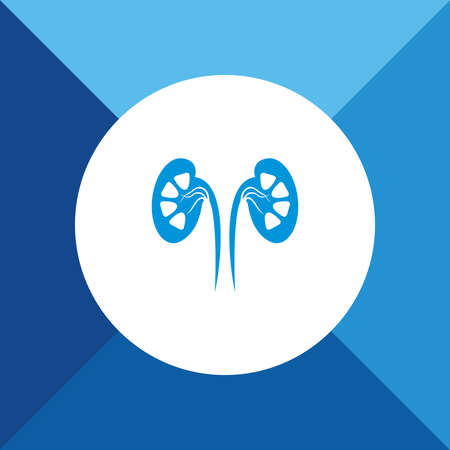 Kidneys icon on blue color background Stock Vector - 37589684
