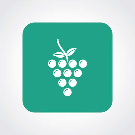 Very Useful Flat Icon of Grapes.