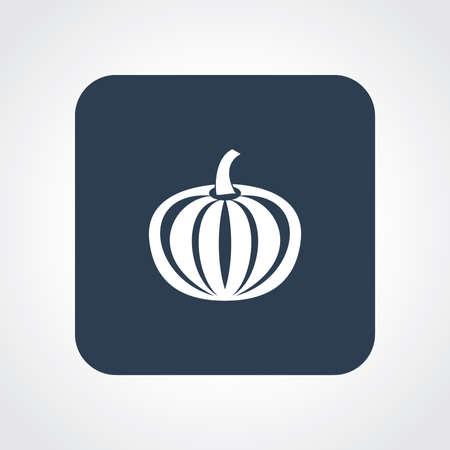 Very Useful Flat Icon of Pumpkin.  Vector