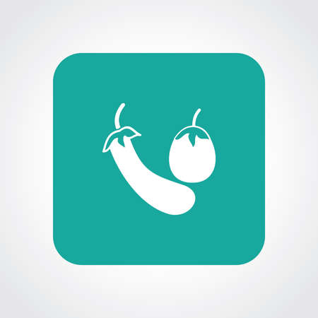 useful: Very Useful Flat Icon of Eggplant.   Illustration