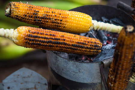 Awesome grilled corn. Grilled vegetables is significant type from street food culture of many peoples. Roasted corn
