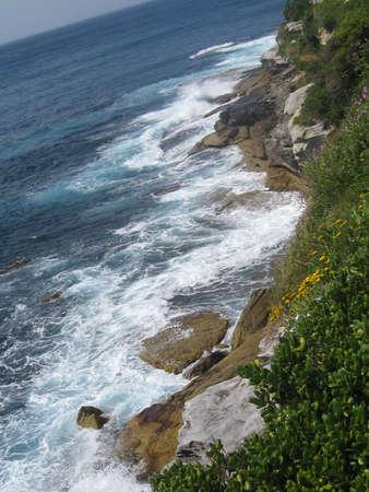 windswept: Windswept Coastline
