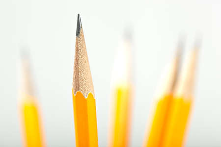 A group of yellow pencils photo