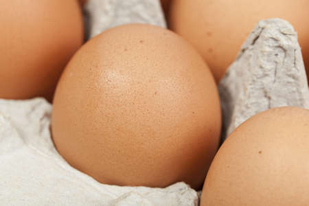 Brown eggs in an egg carton Stock Photo - 9737802