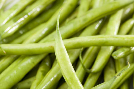 A fresh green string bean against a white background photo
