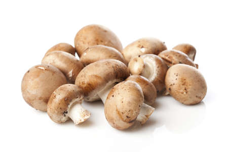 paddenstoel: Een frisse bruine paddestoel tegen een witte achtergrond