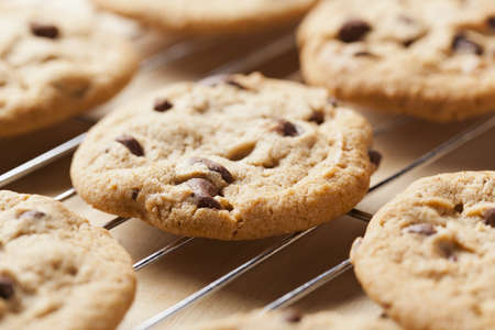 biscuits: Delicious Fresh Chocolate Chip Cookies Stock Photo