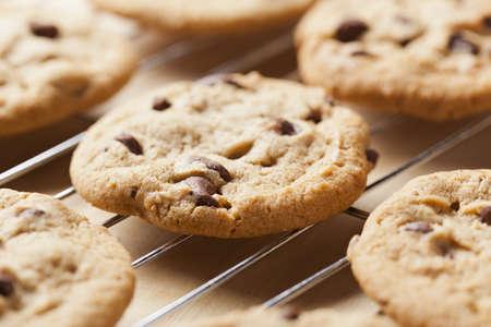 Delicious Fresh Chocolate Chip Cookies Foto de archivo