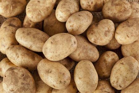 russet potato: Fresh Organic Whole Potato on a background Stock Photo