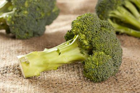 brocoli: Fresh Green Organic Broccoli against a background