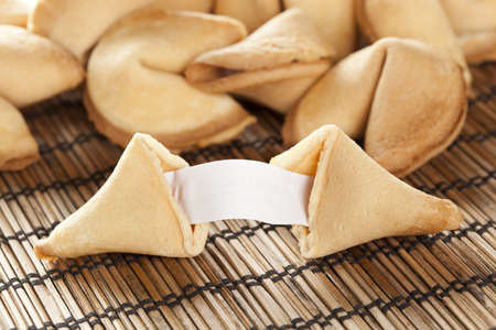Fresh Made Fortune Cookie against a background photo