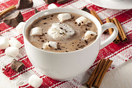 Gourmet Hot Chocolate with marshmellows and cinnamon photo