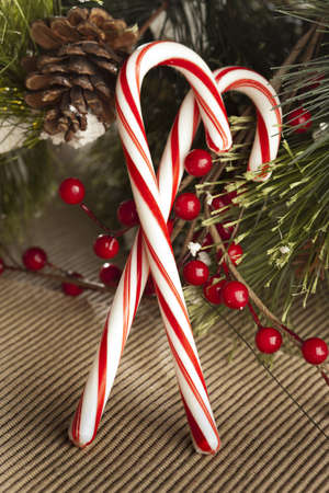 peppermint candy: Red and White Candy Cane made for Christmas Stock Photo