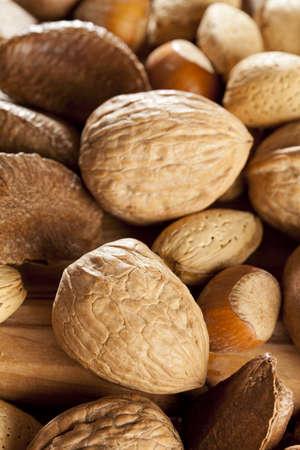 pinoli: Freschi Nuts organici misti di noci, mandorle, nocciole, noci del Brasile