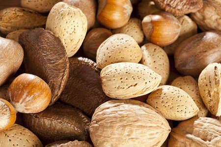 Fresh Organic Mixed Nuts including Walnuts, Almonds, Hazelnuts, Brazil Nuts