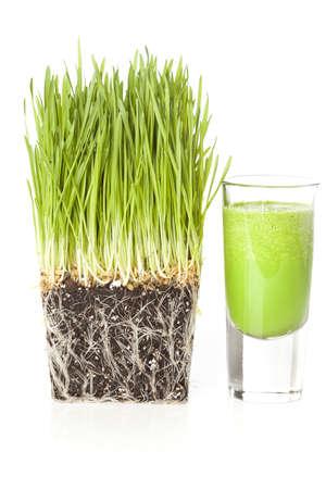 Green Organic Wheat Grass Shot ready to drink Stock Photo