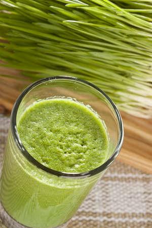 Green Organic Wheat Grass Shot ready to drink Reklamní fotografie