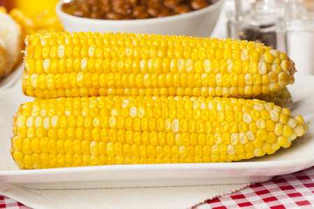 Fresh Organic Yellow Corn on the Cob on a background photo