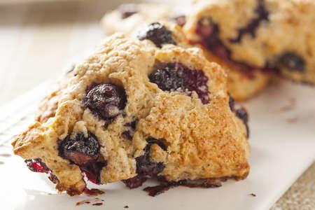 scone: Fresh Homemade Blueberry Breakfast Scones ready to eat Stock Photo