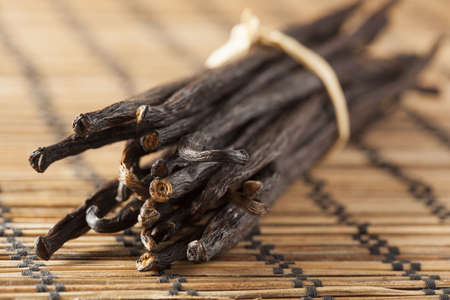Fresh Brown Organic Vanilla Bean against a background Reklamní fotografie