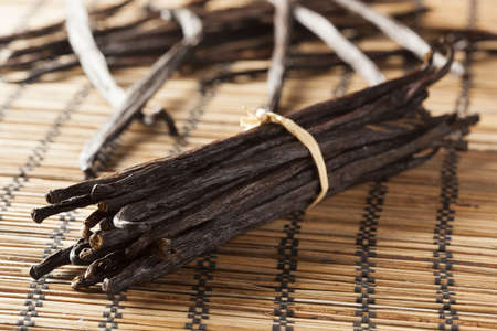 Fresh Brown Organic Vanilla Bean against a background Reklamní fotografie - 17909465