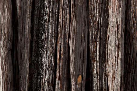 Fresh Brown Organic Vanilla Bean against a background Reklamní fotografie