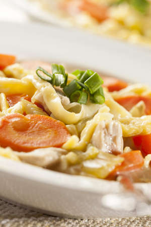 chicken noodle: Homemade Organic Chicken Noodle Soup with celery and carrots