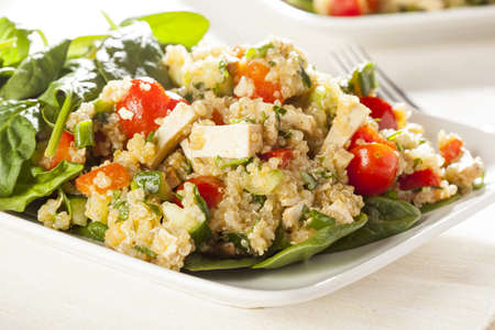 vegetarian food: Organic Vegan Quinoa with vegetables like tomato, tofu, and cucumber