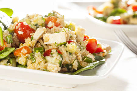 Organic Vegan Quinoa with vegetables like tomato, tofu, and cucumber