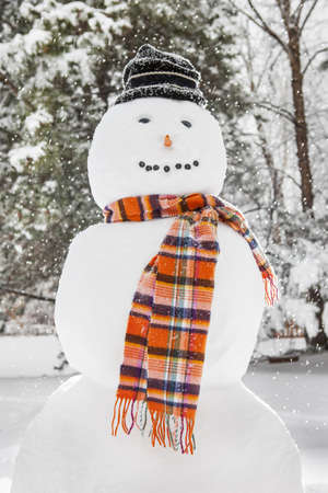 Merry White Snowman with an orange scarf and a hat photo