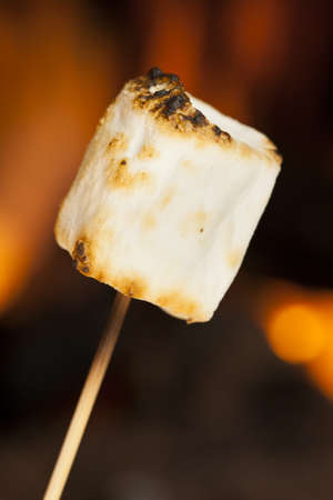 Delicious White Fluffy Roasted Marshmallows in front of a fire Stock Photo - 18582154