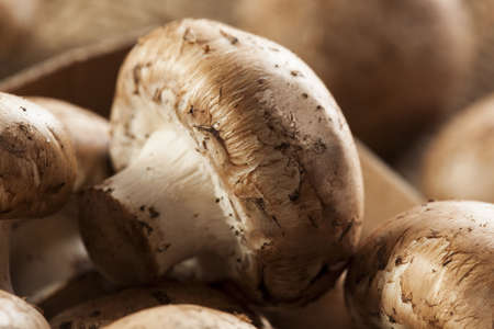 bella: Organic Brown Baby Bella Mushrooms against a background