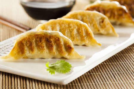 potstickers: Homemade Asian Vegeterian Potstickers with soy sauce and pork