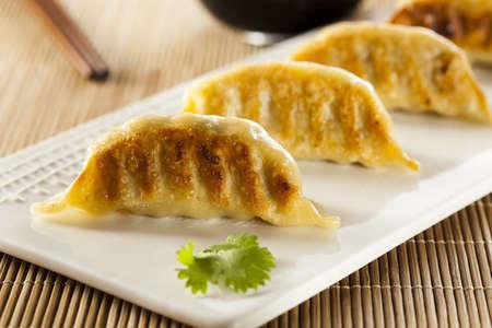 dumpling: Homemade Asian Vegeterian Potstickers with soy sauce and pork