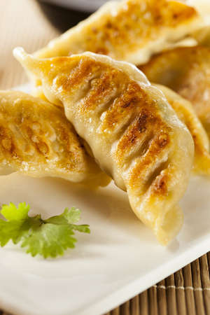 gyoza: Homemade Asian Vegeterian Potstickers with soy sauce and pork