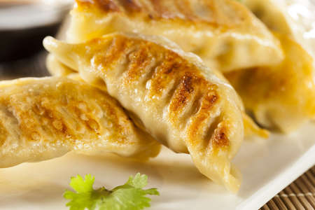 Homemade Asian Vegeterian Potstickers with soy sauce and pork photo