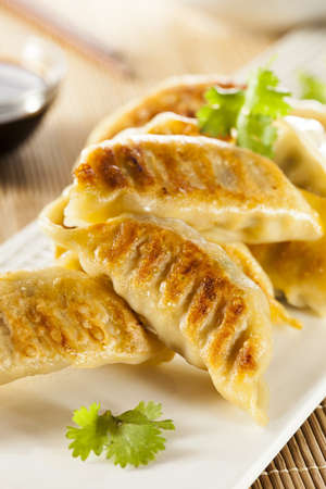 Homemade Asian Vegeterian Potstickers with soy sauce and pork