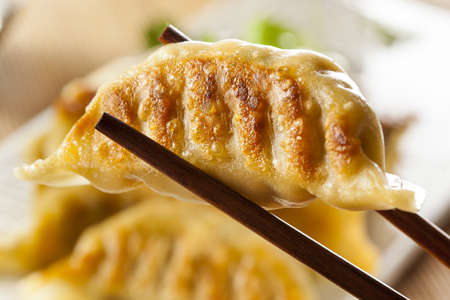 vegeterian: Homemade Asian Vegeterian Potstickers with soy sauce and pork