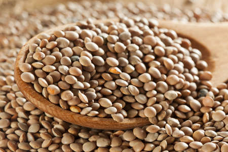 green peas: Dry Organic Brown Lentils against a background