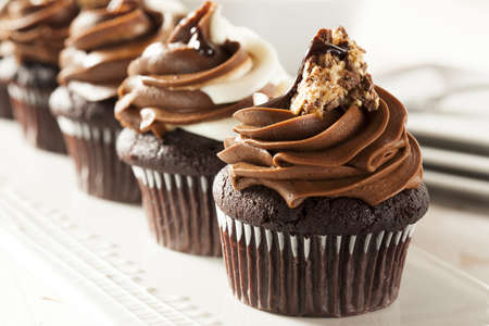 frosting: Homemade Chocolate Cupcake with chocolate frosting against a background