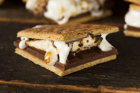 marshmallow: Homemade Smore with chocolate and marshmallow on a graham cracker Stock Photo