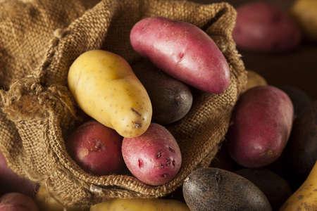 raw organic fingerling potato medley against a background
