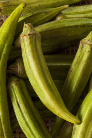 okra: Organic Green Okra Vegetable against a Background Stock Photo